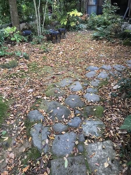 落ち葉の庭